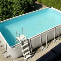 Вербена бассейн